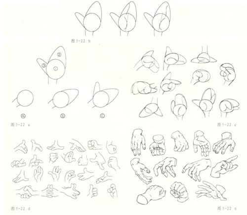 简笔画 设计 矢量 矢量图 手绘 素材 线稿 500_436