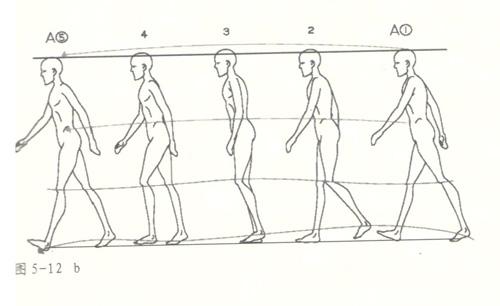 动画制作走的运动规律