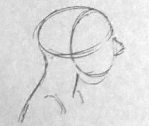 头部的画法