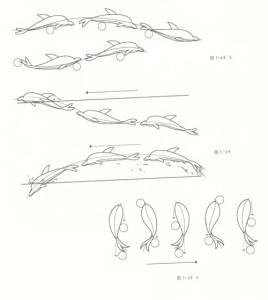 鱼类的运动规律